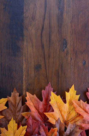 Autumn Fall background for Thanksgiving or Halloween with leaves and decorations on rustic wood table with copy space for your text here. Zdjęcie Seryjne
