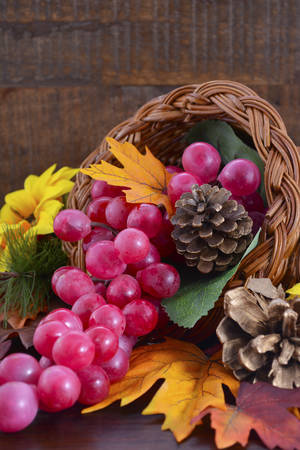 harvest cone cornucopia: Autumn background with traditional Thanksgiving cornucopia on dark wood table. Stock Photo