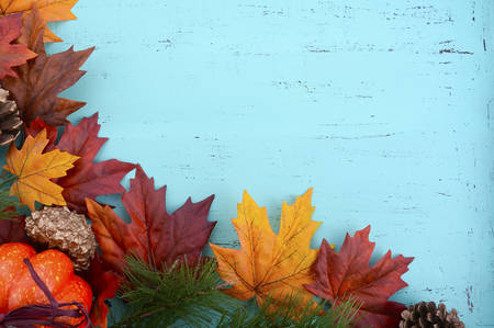 Autumn Fall rustic background on aqua blue vintage distressed wood with autumn leaves and decorations. Stock Photo