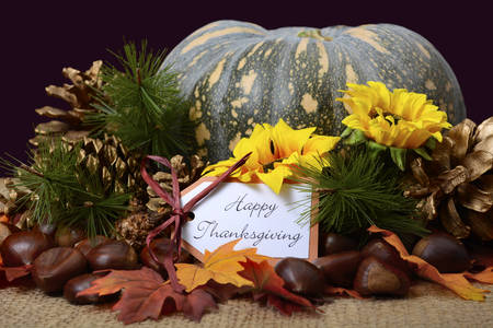 Happy Thanksgiving Pumpkin in Rustic Setting on burlap covered table with greeting message. Stock Photo