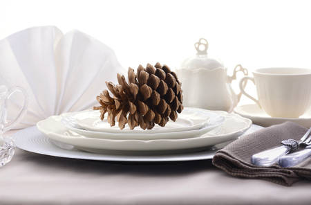 dinner party: Elegant Thanksgiving table place setting with fine china, crystal and antique cutlery in subdued colors with pine cone place card holder.
