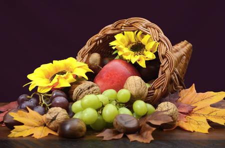 cornucopia: Gracias cornucopia, cuerno de la abundancia de mimbre, centro de mesa con frutas, frutos secos, hojas y girasoles en la mesa de madera oscura. Foto de archivo