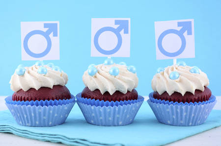 observance: International Mens Day Cupcakes with Male Symbols on pale blue and white wood background.