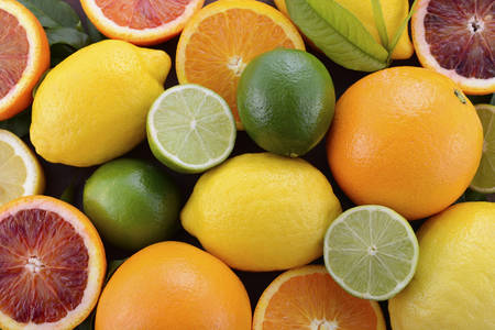 citrus: Mixed citrus fruit including navel and blood oranges, lemons and limes on dark wood table.