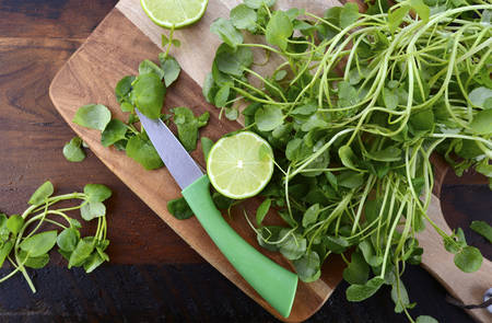 paring: Preparing watercress for healthy salad on dark wood chopping board with paring knife.