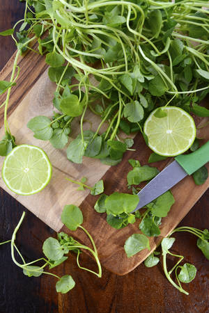 paring knife: Preparing watercress for healthy salad on dark wood chopping board with paring knife.