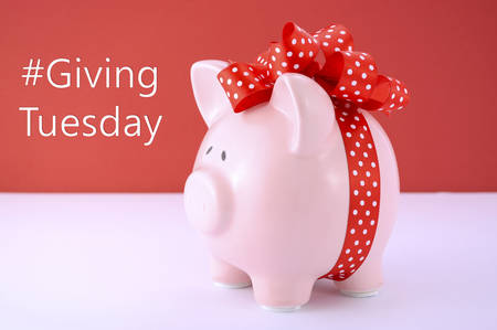giving: Gift wrapped piggy bank on red white background for Giving Tuesday savings concept.