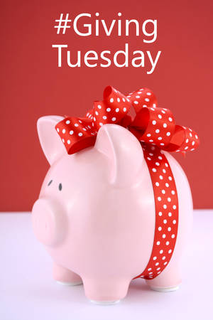 gift wrapped: Gift wrapped piggy bank on red white background for Giving Tuesday savings concept.