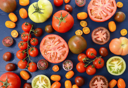 medley: Medley of Tomato Varieties on Blue Wood Background.