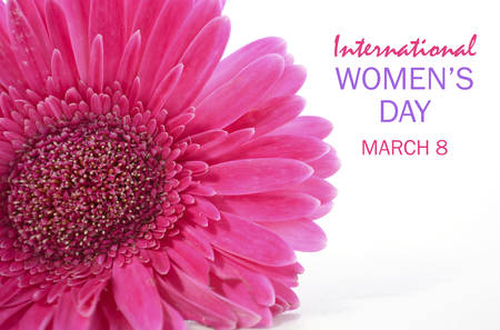 International Womens Day Pink Gerbera closeup on white wood table with sample text.