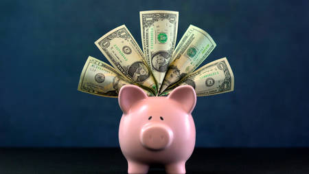 Pink Piggy bank money concept on dark blue background, stuffed with USA cash. Stock Photo