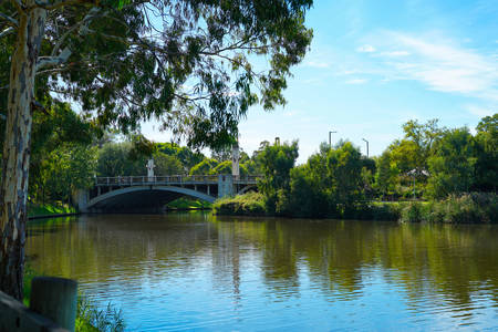 View of King William Bridge, from Adelaide Riverbank acroos the Torrens River, South Australia.