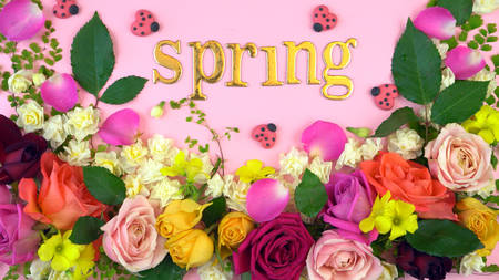 Springtime overhead flat lay display of fresh roses and jonquil buds on pink wood table backgound, spelling the words, Spring, in gold letters.