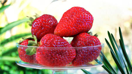 glycemic: Strawberries in glass bowl closeup outdoors in tropical garden setting.