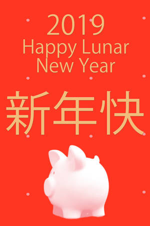 Happy Chinese Lunar New Year 2019 Year of the Pig 스톡 콘텐츠