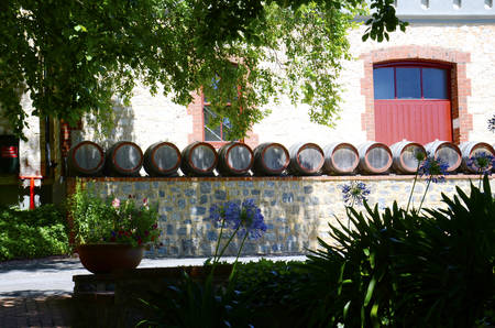 Row of wine barrels in quaint cottage style winery gardens.