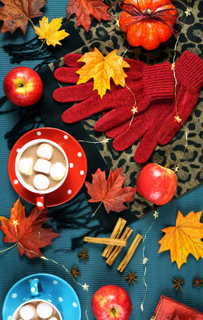 Autumn Fall theme flat lay overhead with cups of hot chocolate, spices and marshmallows on scattered maple leaves background. Banco de Imagens
