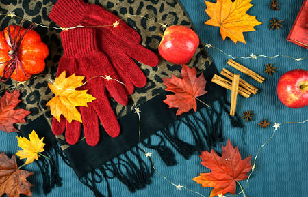 Autumn Fall bright colors theme flat lay overhead on scattered maple leaves background.