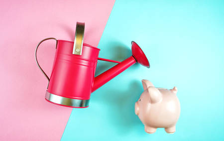 Making money grow, savings and investments concept with piggy bank and watering can, with copy space.