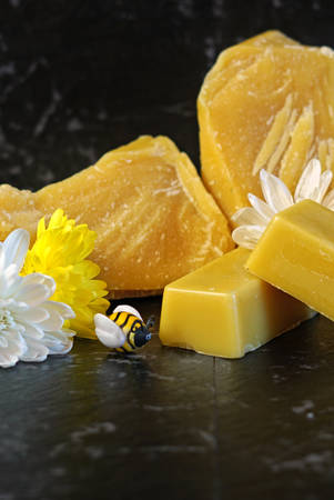 Honeybees related product beeswax, a natural wax with many household uses including lip balm, skin moisturizer, cooking, candles and furniture polish.