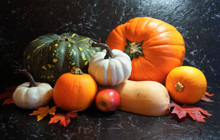 Autumn harvest, diverse assortment of pumpkins on a black marble table counter.