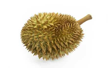 Durian from Thailand.