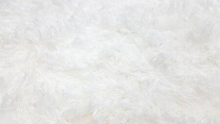 White wool karpet