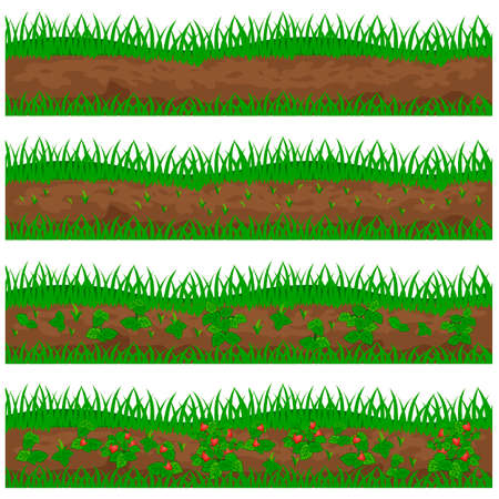wild strawberry: Set of strawberry plantation for a farm isolated on white background. Can be used as farm game asset. Vector illustration