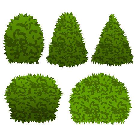 Set van tuin struiken. Geïsoleerde vectorstruiken kunnen worden gebruikt om topiary tuinscène te construeren. Vector illustratie