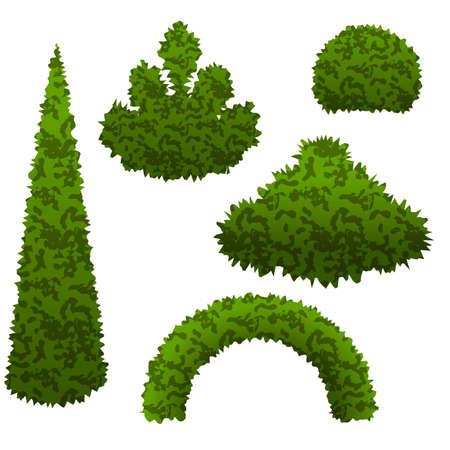 Ensemble de buissons de jardin. Des buissons de vecteurs isolés peuvent être utilisés pour construire une scène de jardin topiaire. Illustration vectorielle Banque d'images - 79192418
