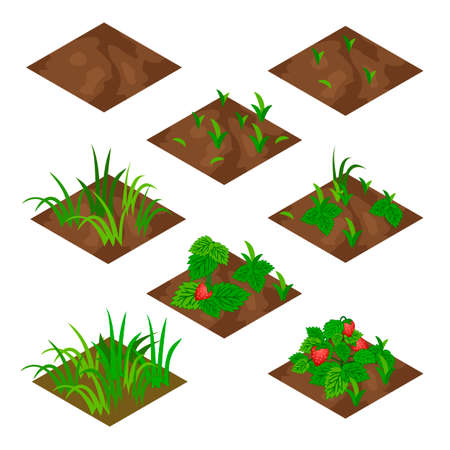peasant: Garden or farm isometric tile set. Isolated tiles with grass and strawberry fruits .. Vector illustration, can be used as a farm game asset  to create landscape or garden scene.