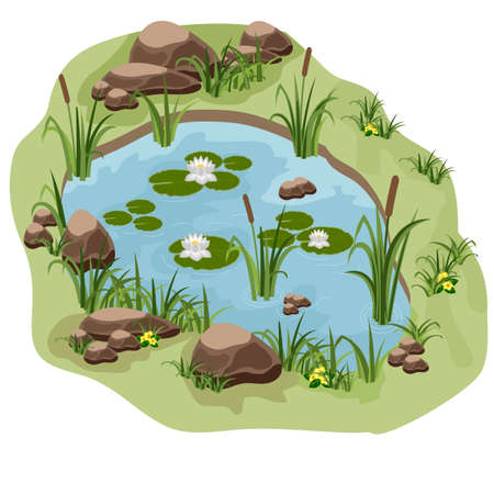 Pond with water lilies, reeds and stones. Use as background for cartoon or game scene. Vector illustration