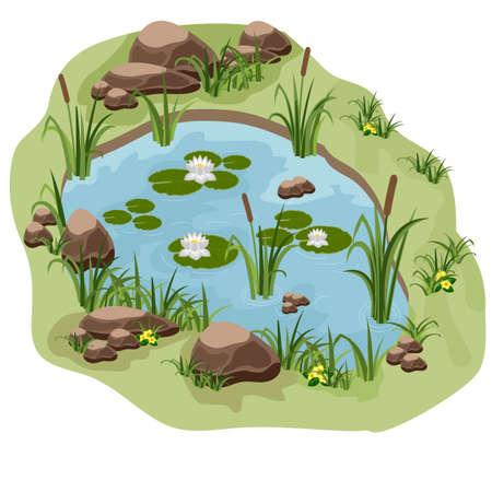 Stagno con ninfee, canne e pietre. Utilizzare come sfondo per cartoni animati o scene di gioco. Illustrazione vettoriale