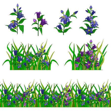 Set of garden flower in grass for landscape scene creating. Bell-flowers composed in grass. Can be used as cartoon or game asset. Vector illustration