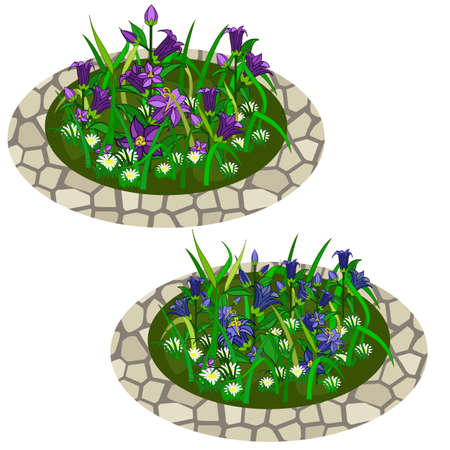 Set of flowers in grass for garden scene creating. Bell-flowers and chamomiles composed in flowerbeds. Can be used as cartoon or game asset. Isolated elements, vector illustration