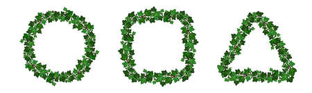 Ivy leaves garlands. Set of decorative floral frame borders. Circular, square and triangular shape. Summer green ivy foliage branches isolated on white background. Vector illustration Ilustração Vetorial