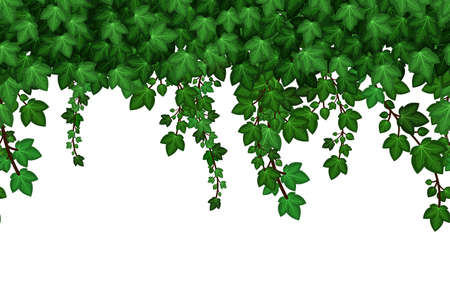Green ivyfoliage garland. Hanging ivy leaves, summer natural plant wall background. Seamless pattern. Vector illustration