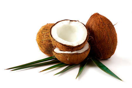 coconut, on a white background, horizontal, no people,