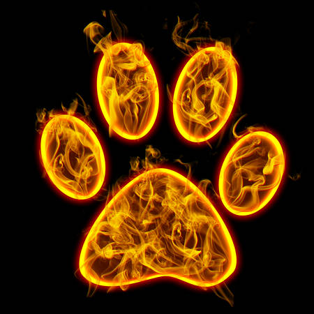symbol of footprint. Flame / Check all fire letters in my portfolio. Stock Photo - 107431069