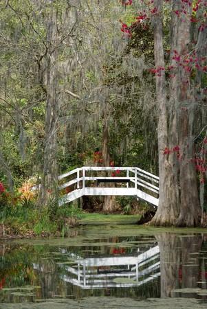 Bridge over black waters Stock Photo