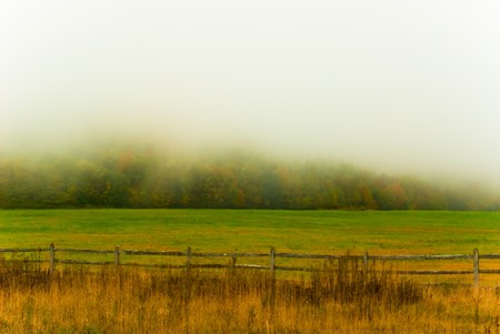 settled: The fog settled in over a colorful fall valley in Canaan Valley, WV.