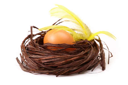 Egg in the nest with yellow feathers, isolated on white photo
