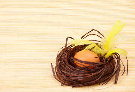 Two eggs in the nest with yellow feathers photo