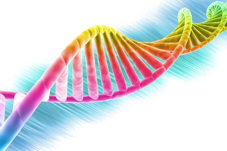dna strand: DNA strand modern design, bright and colorful  Stock Photo