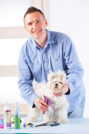 groomer: Smiling man grooming a dog purebreed maltese. Stock Photo