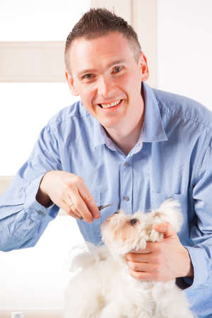 Smiling man grooming a dog purebreed maltese with a little scissors Stock Photo - 19339689