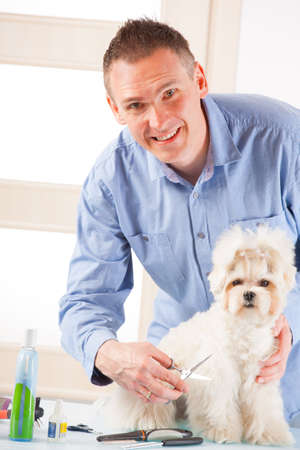 Smiling man grooming a dog purebreed maltese. Stock Photo - 19339687