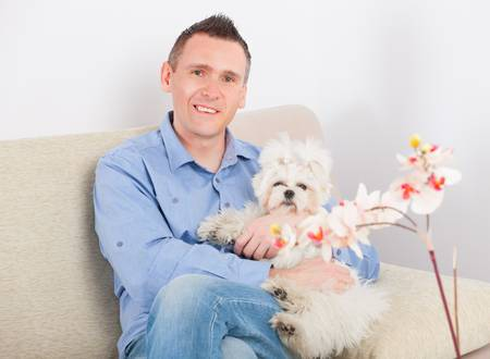 cuddly: Little dog maltese sitting with his owner on the sofa in home