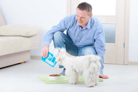 Little dog maltese with his owner feeding him on the floor in home photo
