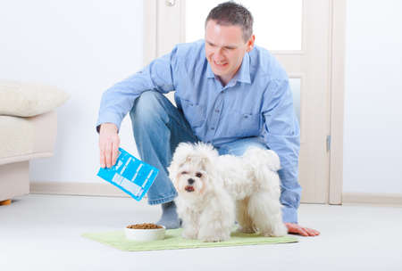 man dog: Little dog maltese with his owner feeding him on the floor in home